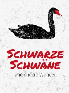 Schwarzer Schwan Wunder Risiko Thomas Wuttke
